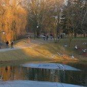 W parku...