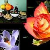 Bardzo dziękuję za życzenia i piękne kwiaty