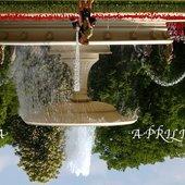 dziwna fontanna
