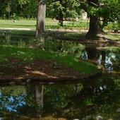 Dzisiaj w parku