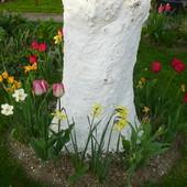 Kolorki wiosny