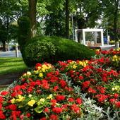 Paw Tolek -Park  w Międzyzdrojach
