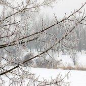 Śnieg i szron