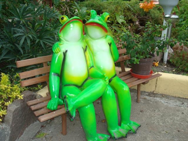 Żabki na ławce