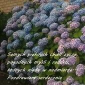 Przesyłam letnie pozdrowionka dla wszystkich;))