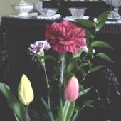 Uwielbiam kwiaty,,,