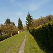 Ogródki działkowe w jesiennej szacie:)