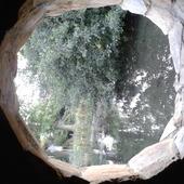 przez okno widok