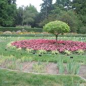 zdjęcie z ogrodu b.w krakowie