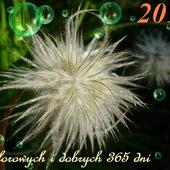 Kwietne życzenia :)))