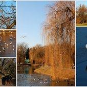 Dzisiaj w parku też w moim mieście.