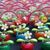 Kwiatki dla leniwych