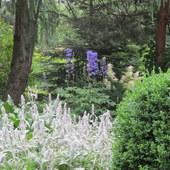 Letni Ogród