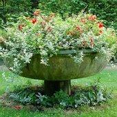 Skorupa z kwiatami