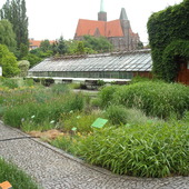 w ogrodzie b.wrocław