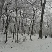wczoraj nasypało śniegu u mnie