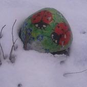 Biedronki przysypał śnieg