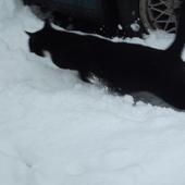 ...i nawet śnieg nie był mu już straszny