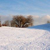 Zimowy widok