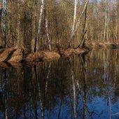 Jezioro Opaleń