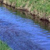 Wiosenna rzeka