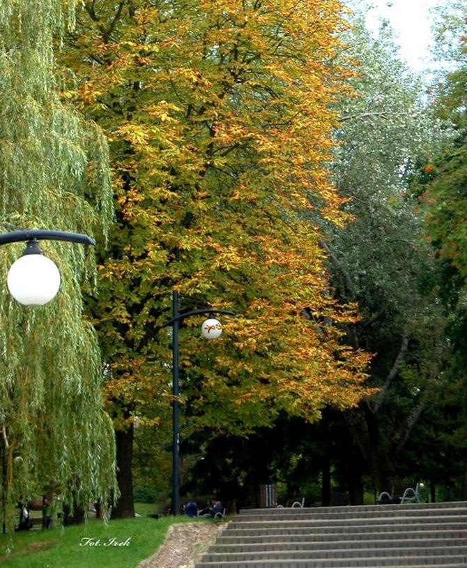To już jesień idzie przez park