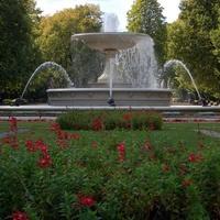 Kwiaty i fontanna