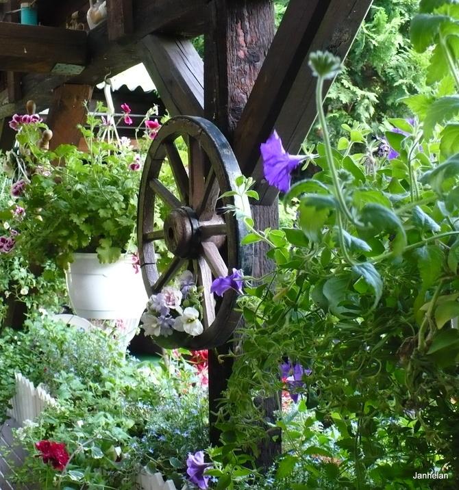 Lubię takie dodatki w ogrodach .... >>