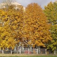 Jesień na moim osiedlu