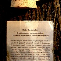Hotel dla owadów cz. 2