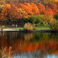 Jesień w parku