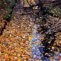 Kolorowy kanał z wodą