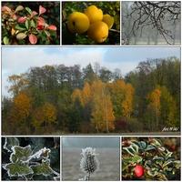 Pożegnanie jesieni......