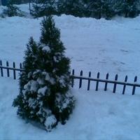 Piękna zima :)