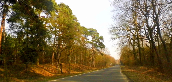 A wczoraj było tak pięknie:)