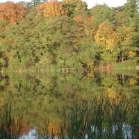 Jesienią nad wodą