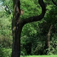 Fotelik dla przyrodników i fotografów