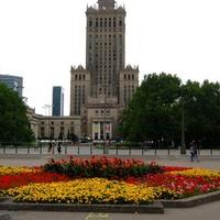 Klomb w centrum stolicy