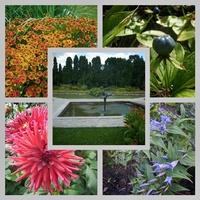 Niedziela w Ogrodzie Botanicznym...