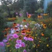wieczorową porą-wrzesień