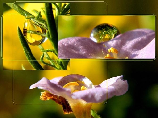 W słońcu i w kwiatach:)