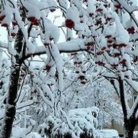 Duuużo śniegu;)