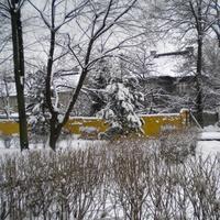 Zima - dalszy ciąg
