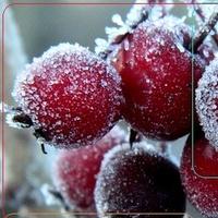 Zima Pomaga W Dekora