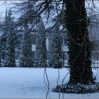 Coś dla wielbicieli zimy....