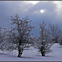 Zima trzyma !!!
