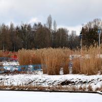 Kolorowa zima w parku