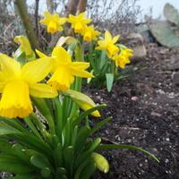 Mamy Wiosnę Huraaaa