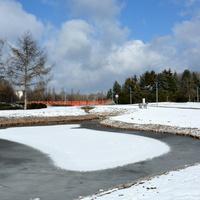 Radosny zimowy widok w parku
