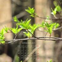 kartka z kalendarza - kwiecień